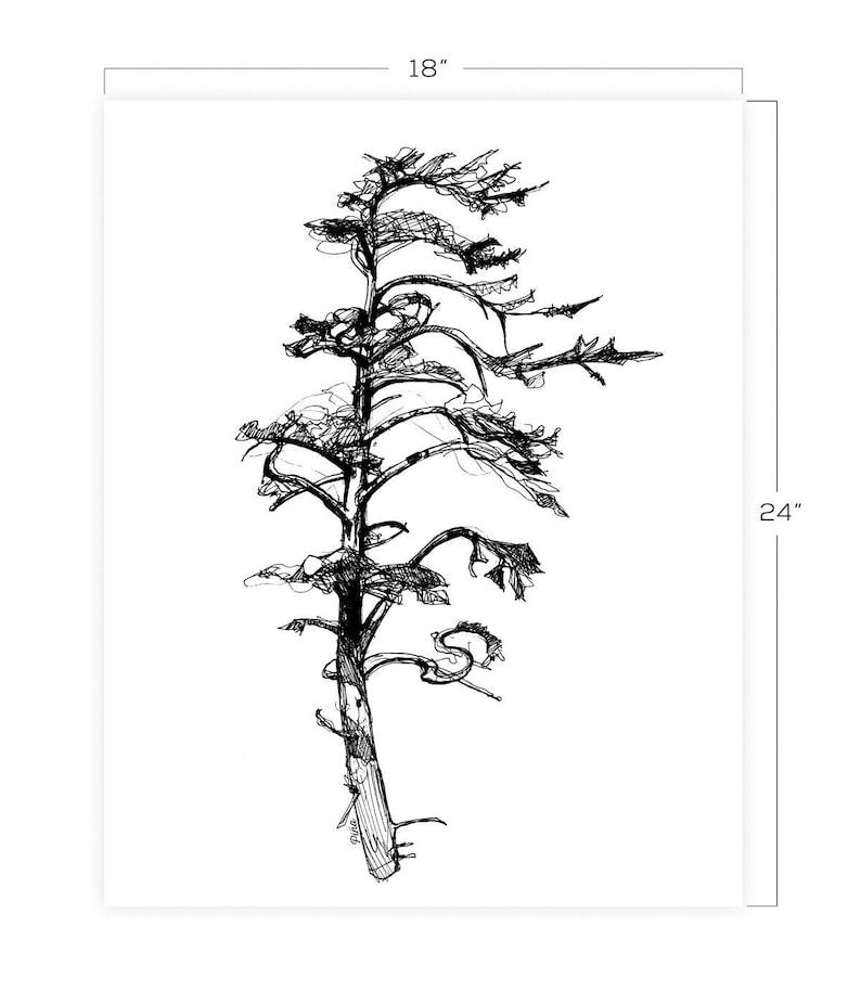 Hemlock Downloadable Print 18 x 24 image 0