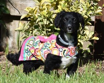 Dog Dress Bright Floral