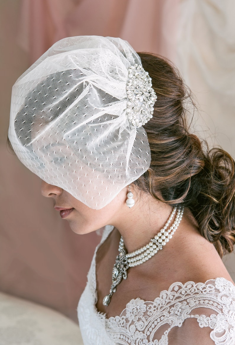 Wedding Birdcage Veil with Crystal and Pearl Applique Point image 0