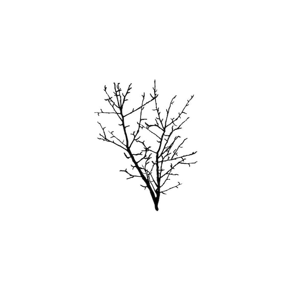 49-08 BARE BRANCH Rubber Stamp~Large Cling Stamp Unmounted~Winter or Fall Branch~Landscape Trees Birch Branch