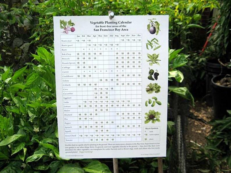 Vegetable Planting Calendar for San Francisco Bay Area  image 0