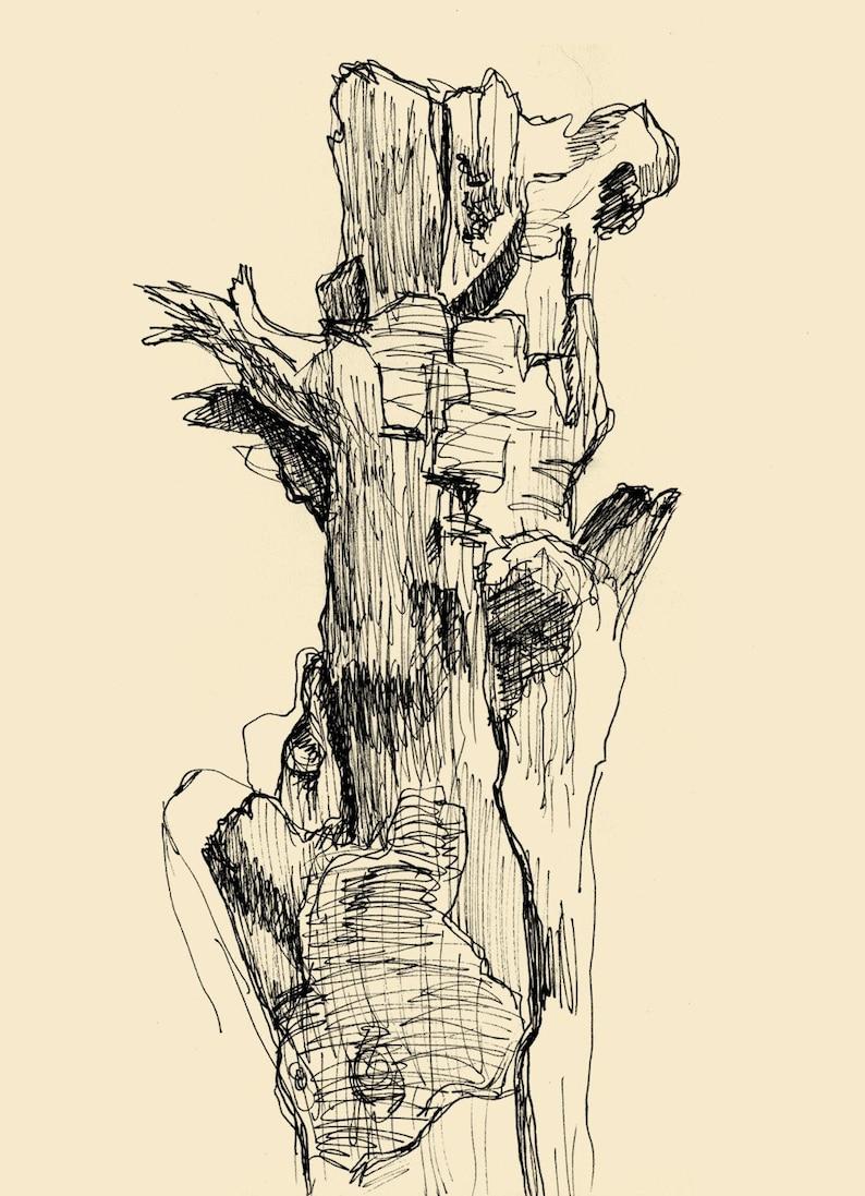 Bark Signed Lichtenstein Art Drawings