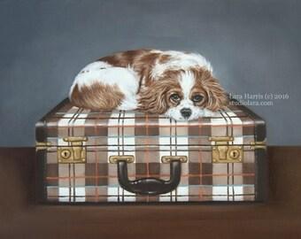 Cavalier King Charles Spaniel on Vintage Plaid Suitcase 11x14 Original OIL Painting by Lara Pet Portrait Cav