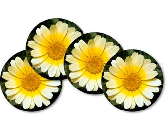 Yellow Daisy Flower Coasters - Set of 4
