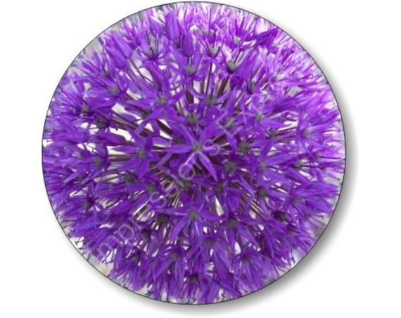 Purple Allium Flower Round Mousepad