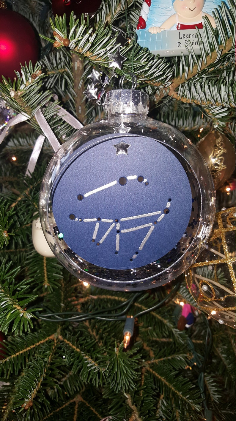 Custom Zodiac Sign Pair Ornament  FAMILY TREE Shadow image 0
