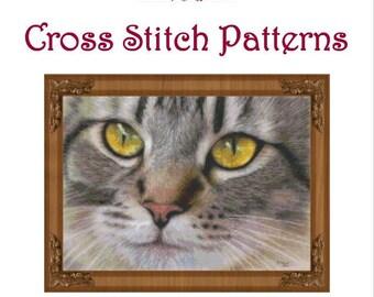 Amber Eyes Cross Stitch Pattern