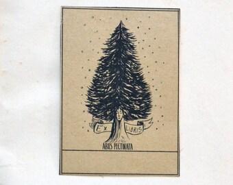 Ex Libris Silver Fir Tree Sticker. 5 Customizable Bookplates with illustration of the Abies Pectinata tree