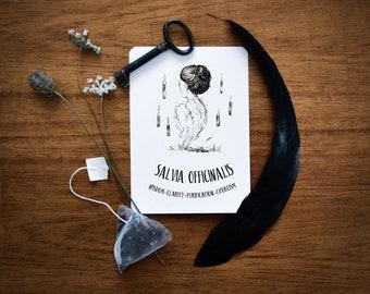 Salvia Officinalis print. Sage illustration, witchcraft antique botanical prints, magic plant print, witch home decor, occult herbarium