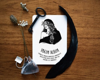Viscum Album print. Mistletoe illustration print, witchcraft antique botanical prints, Yule magic plant print, witch home decor