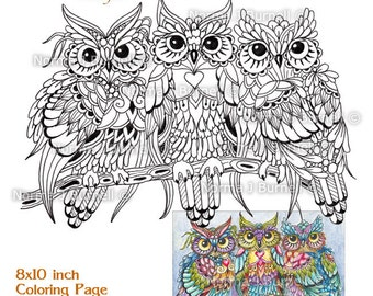 graphic regarding Printable Owl Coloring Pages for Adults known as Owl colour internet pages Etsy