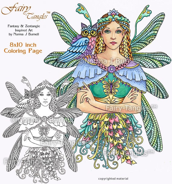 dragonfly fairy printable coloring book sheets norma burnell