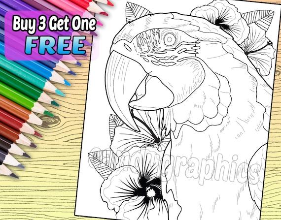 Magnífico guacamayo página de libro de adulto para colorear   Etsy