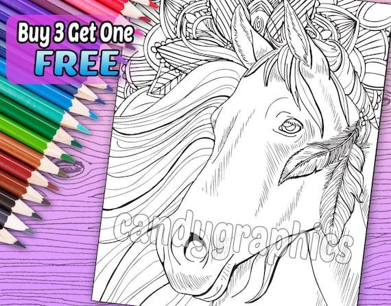 Hermoso caballo 1 - adulto colorear libro página - descarga inmediata para imprimir