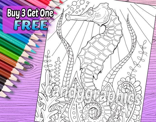 Caballito de mar adulto colorear libro página descarga | Etsy