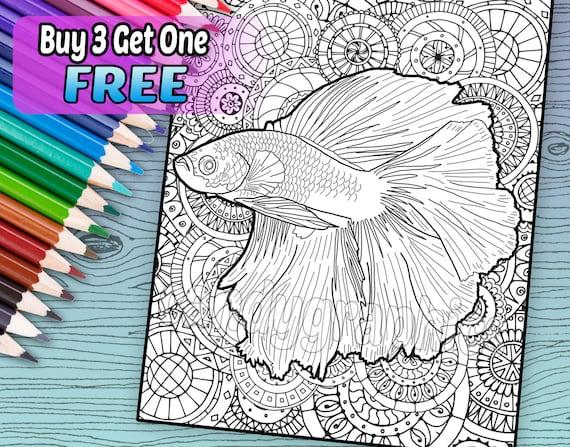 Hermoso Betta peces - página de libro de adulto para colorear - para imprimir descarga inmediata