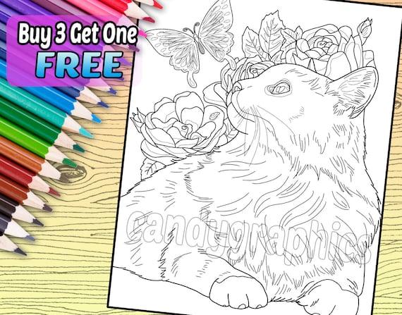Gato con mariposa página de libro de adulto para colorear | Etsy