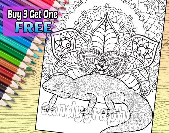 Leopardo Gecko página de libro de adulto para colorear | Etsy