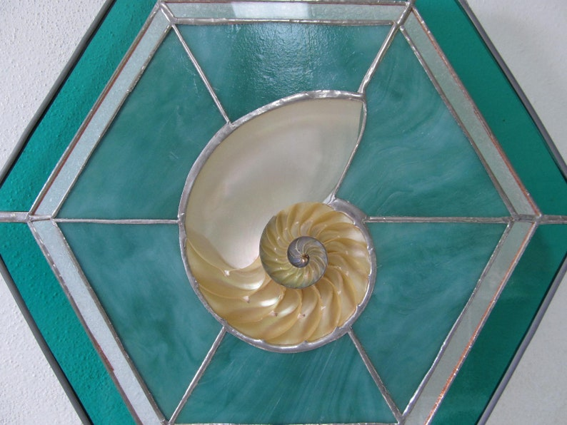 Jade Stained Glass with Large Sliced Nautilus Seashell