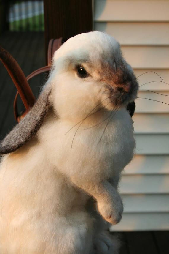 Nadel gefilzt Alpaka Leben Größe Lop Ohr Hase Kaninchen | Etsy