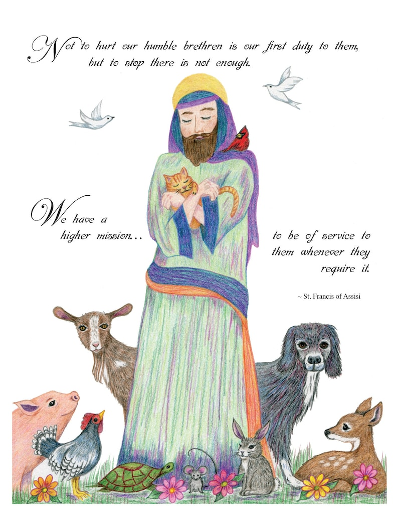 Image result for st francis of assisi love for animals
