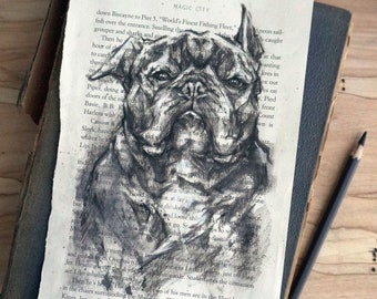 Original charcoal dog portrait, charcoal study, French bulldog, hand drawn original art 6x9, gift for dog lover or book lover