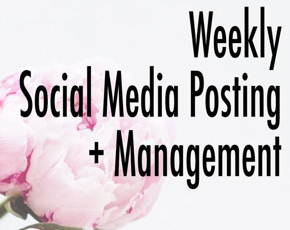 Weekly Social Media Posting and Management for Instagram, Facebook, Pinterest