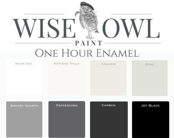 Intro Sale! Wise Owl One Hour Enamel Paint - GALLON