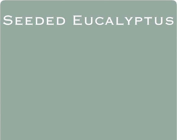 INTRO SALE! Seeded Eucalyptus (Pastel Blue-Green) Wise Owl One Hour Enamel Paint - low flat shipping