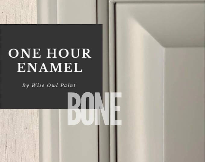 INTRO SALE! Bone (Light Gray) Wise Owl One Hour Enamel Paint - Free Shipping