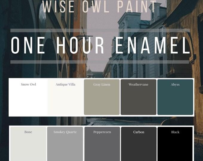 Intro Sale! Wise Owl One Hour Enamel Paint - GALLON