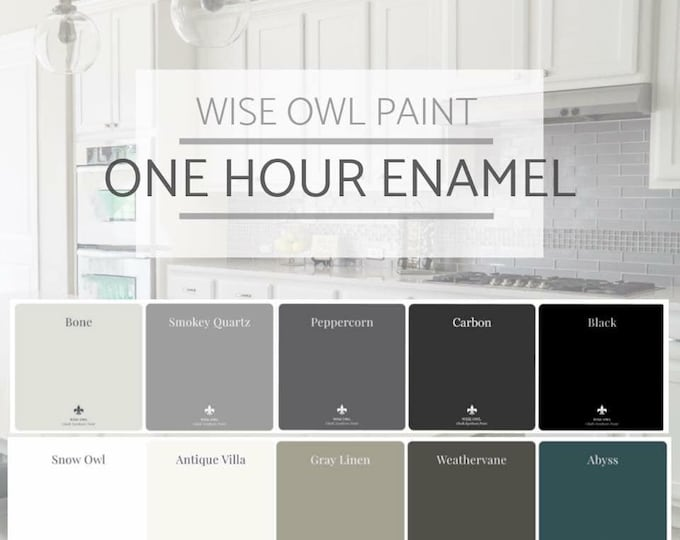 INTRO SALE! Wise Owl One Hour Enamel Paint - Quart - Free Shipping - Free Shipping