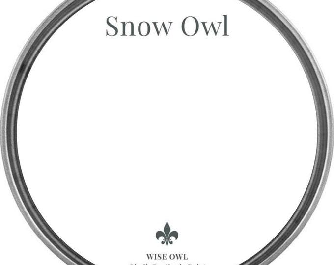 INTRO SALE - Snow Owl (Bright White) - Wise Owl Chalk Synthesis Paint - Free Shipping