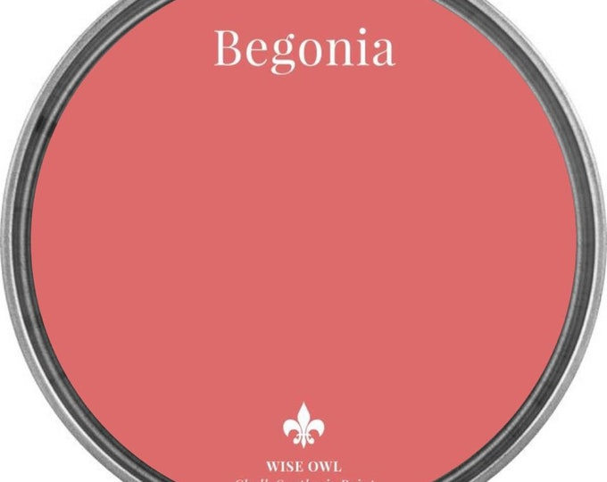 INTRO SALE - Begonia (Coral Pink) - Wise Owl Chalk Synthesis Paint - Free Shipping