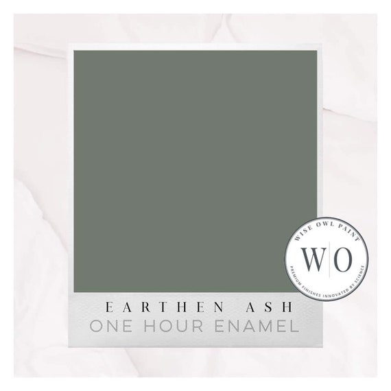 New! Earthen Ash Wise Owl One Hour Enamel Paint - Free Shipping