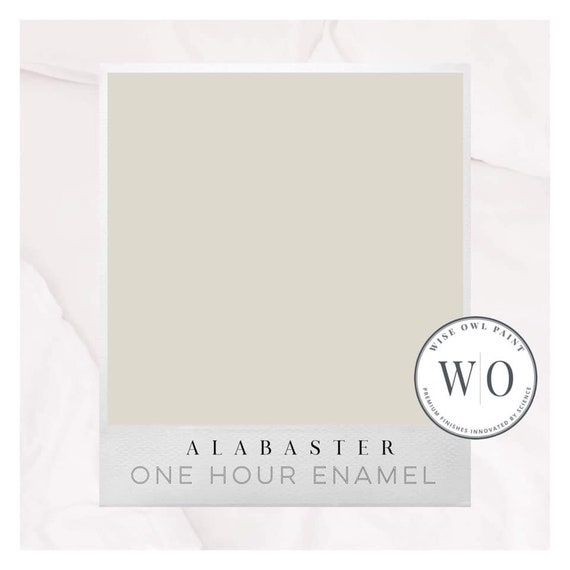 New! Alabaster White Wise Owl One Hour Enamel Paint - Free Shipping