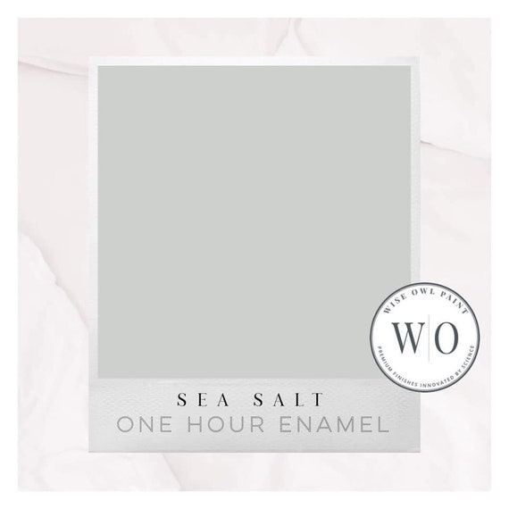New! Sea Salt Wise Owl One Hour Enamel Paint - Free Shipping