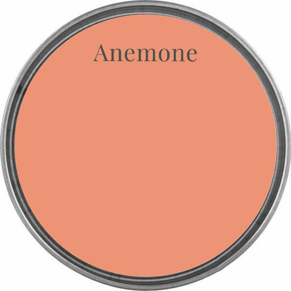 Anemone (Peach Coral) - Wise Owl Chalk Synthesis Paint - Limited Edition Spring/Summer 2019 Seasonal Color - FREE SHIPPING