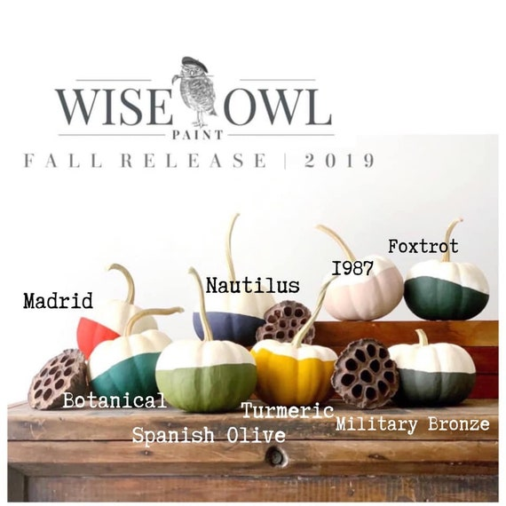 Wise Owl Chalk Synthesis Paint - Limited Edition Spring/Summer 2019 Seasonal Colors - FREE SHIPPING