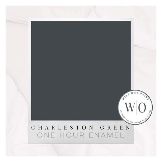 New! Charleston Green Wise Owl One Hour Enamel Paint - Free Shipping