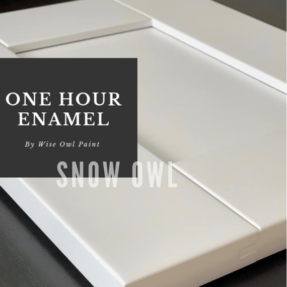 INTRO SALE! Snow Owl (Pure Bright White) Wise Owl One Hour Enamel Paint - low flat shipping