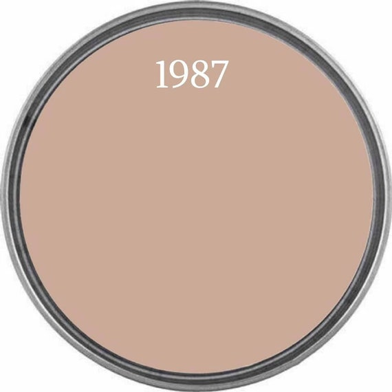 1987 - Baby Pink Paint - Wise Owl Chalk Synthesis Paint  - FREE SHIPPING