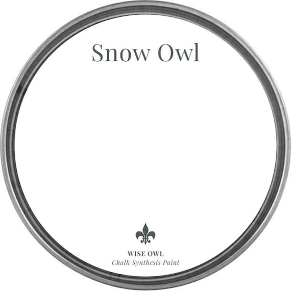 Snow Owl (Bright White) - Wise Owl Chalk Synthesis Paint - FREE SHIPPING