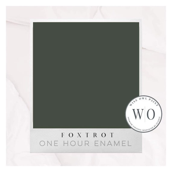 New! Foxtrot (Green) Wise Owl One Hour Enamel Paint - Free Shipping