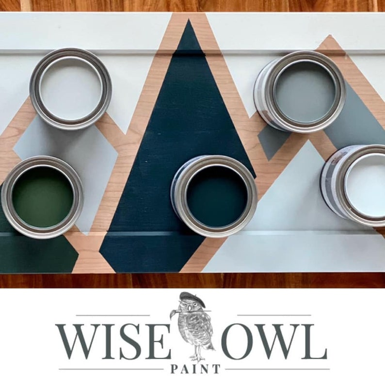 New Free Shipping Sea Salt Wise Owl One Hour Enamel Paint