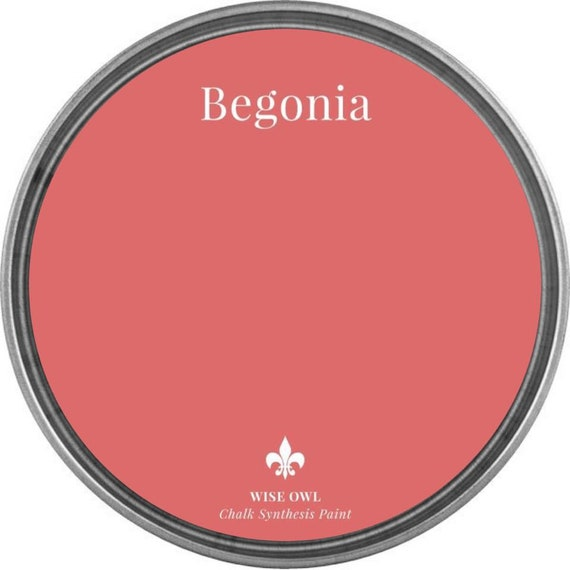 INTRO SALE - Begonia (Coral Pink) - Wise Owl Chalk Synthesis Paint - low flat shipping