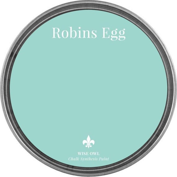 INTRO SALE - Robins Egg (Bright Pale Blue) - Wise Owl Chalk Synthesis Paint - low flat shipping