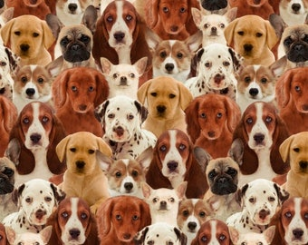 Fabric Windham Fabric - One of a Kind - by Whistler Studios - Puppies 50065D Dogs puppies canine