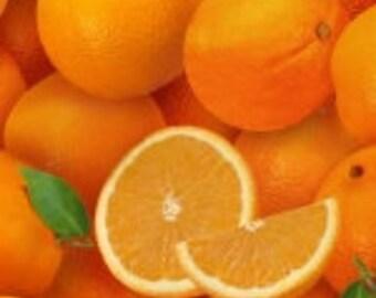 Elizabeth's Studio Food Festival - Oranges 261 - 100% Cotton Florida California