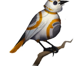 Star Wars - Science Fiction - BB8 - Droids - Starwars tshirt - BB Bird - Birds - Nature - Movies - Starwars